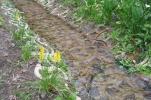 Terrafix_storm_water_channel