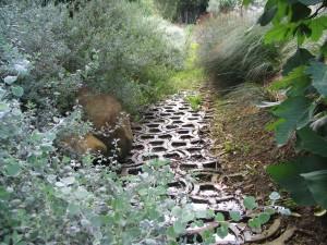 River Rehabilitation with Terrafix