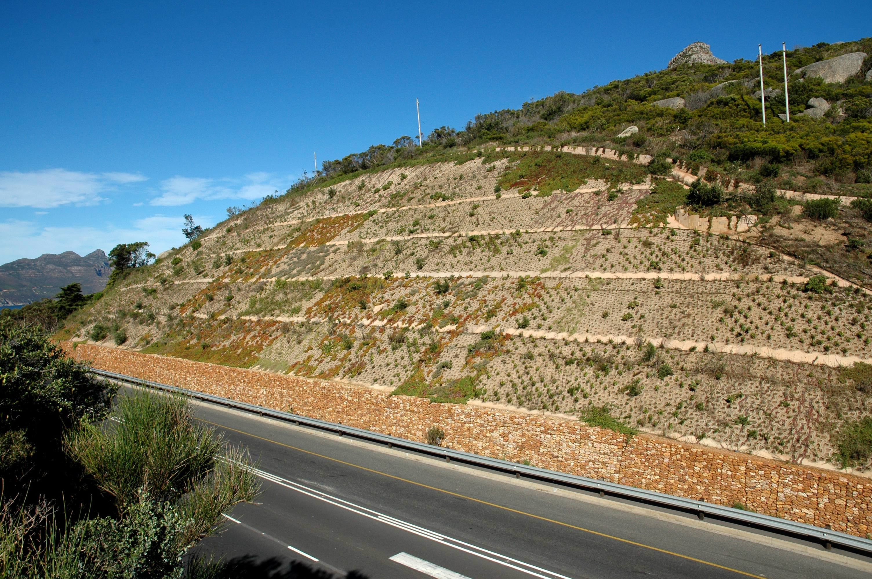 The Rehabilitated Slope with Plant Growth