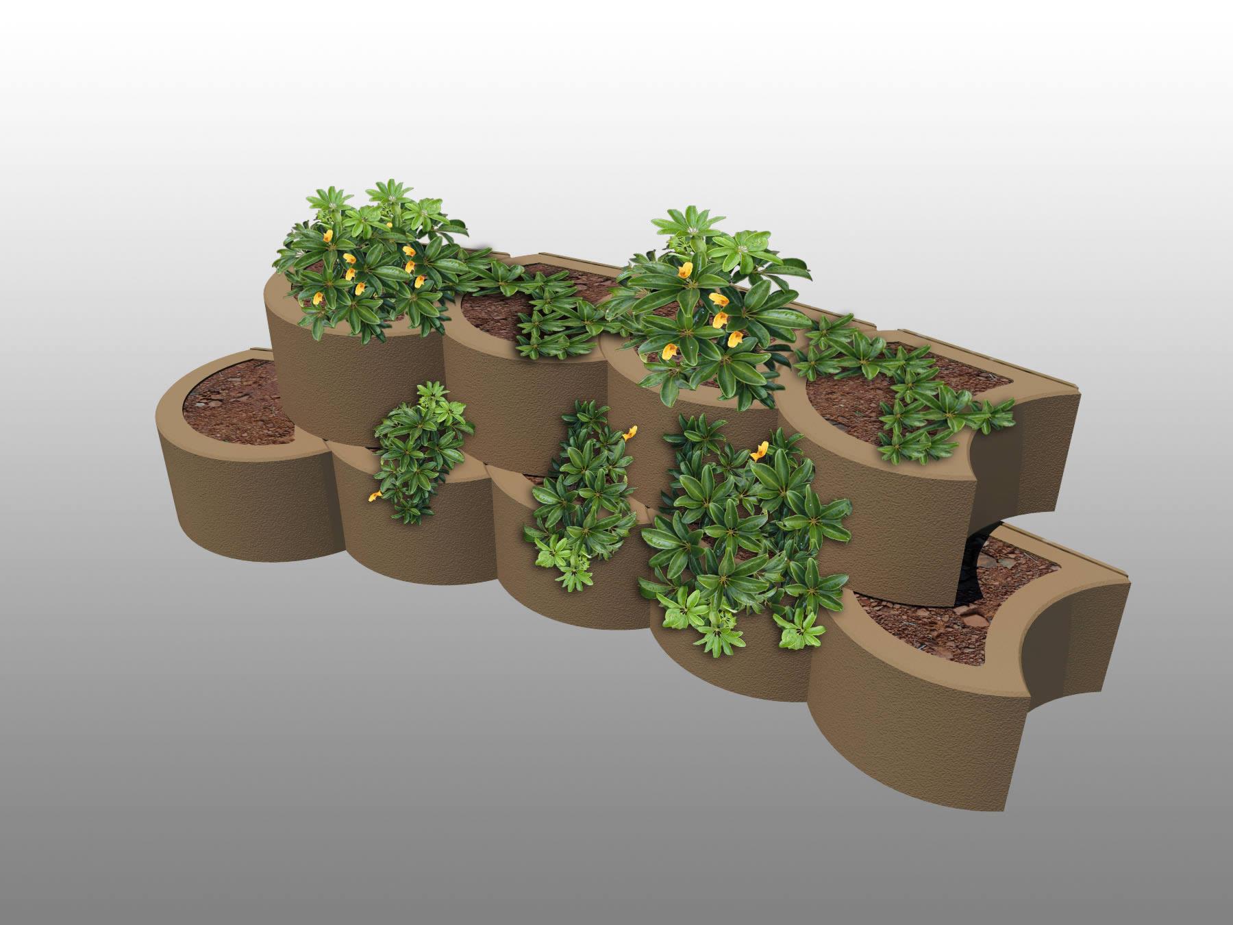 concave curve with plants