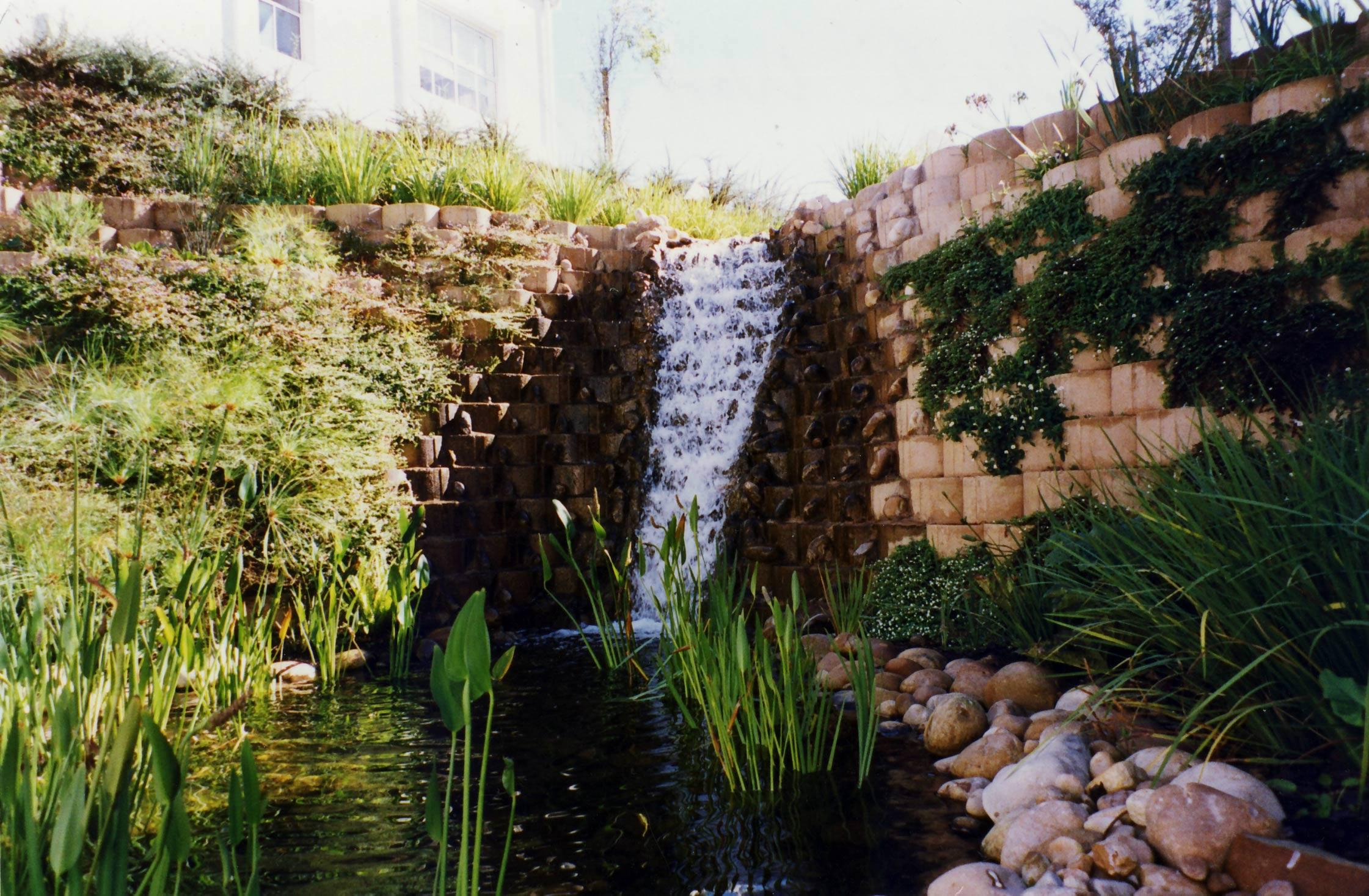 Environmentally sound detention pond