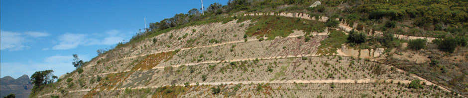 Slope Rehabilitation with Terrafix