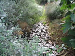 Terrafix Blocks prevent Soil Erosion