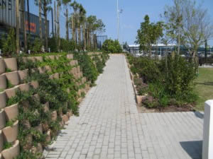 Extensive planting and landscaping undertaken