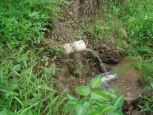 One of the sub-soil drain outlets