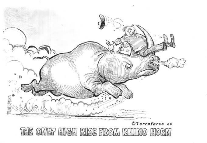 Rhino horn is not medicine