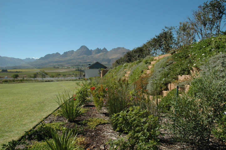 Mainly indigenous shrubs, perennials and groundcovers swathe the retaining walls