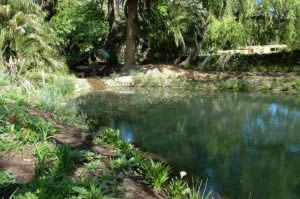 A mixed indigenous environment featuring a bird and fish sanctuary with a 500-m² pond