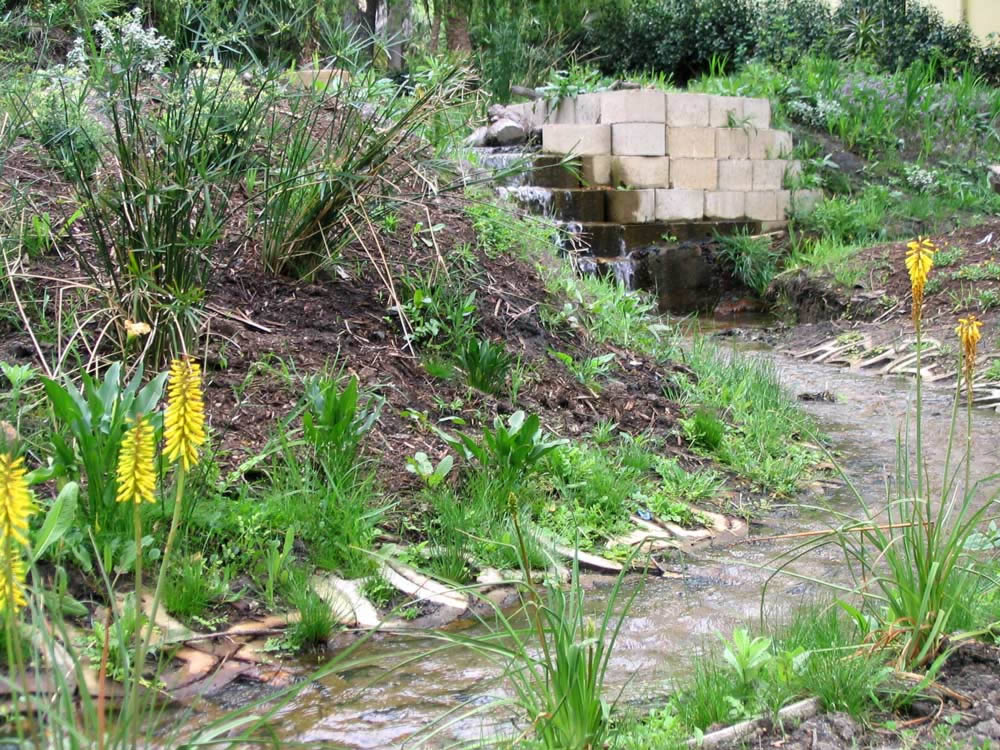 van Jaarsveld of Kirstenbosch National Botanical Gardens was consulted for plant choice