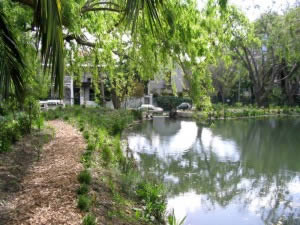 A walkway around the pond allows for the residents, with permission form the Cape Town bird club, to enjoy the area