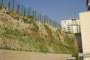 Heavy retaining wall, plants soften the look