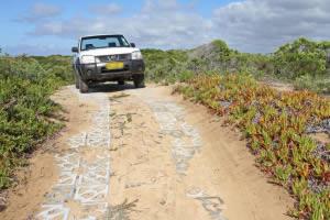 Permanent, yet flexible jeep tracks