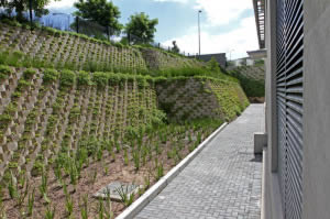Terraced  Decorwall retaining walls that reach up to 7m high