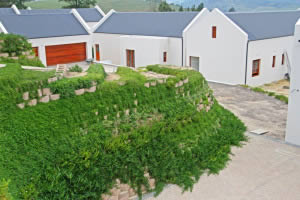 Green walls at Cape Town estate