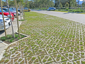 Terracrete hard lawn paving planted with Cynodon dactylon grass. (kweek)
