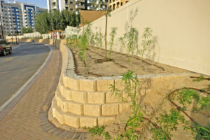 Terraforce L16 blocks, Silicon Oasis, Dubai 2015