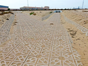 Network of permeable storm water channels that will effectively collect any excess rain water