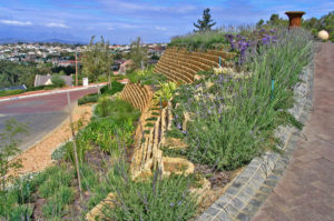 Terraforce single skin gravity retaining wall, beautifully planted