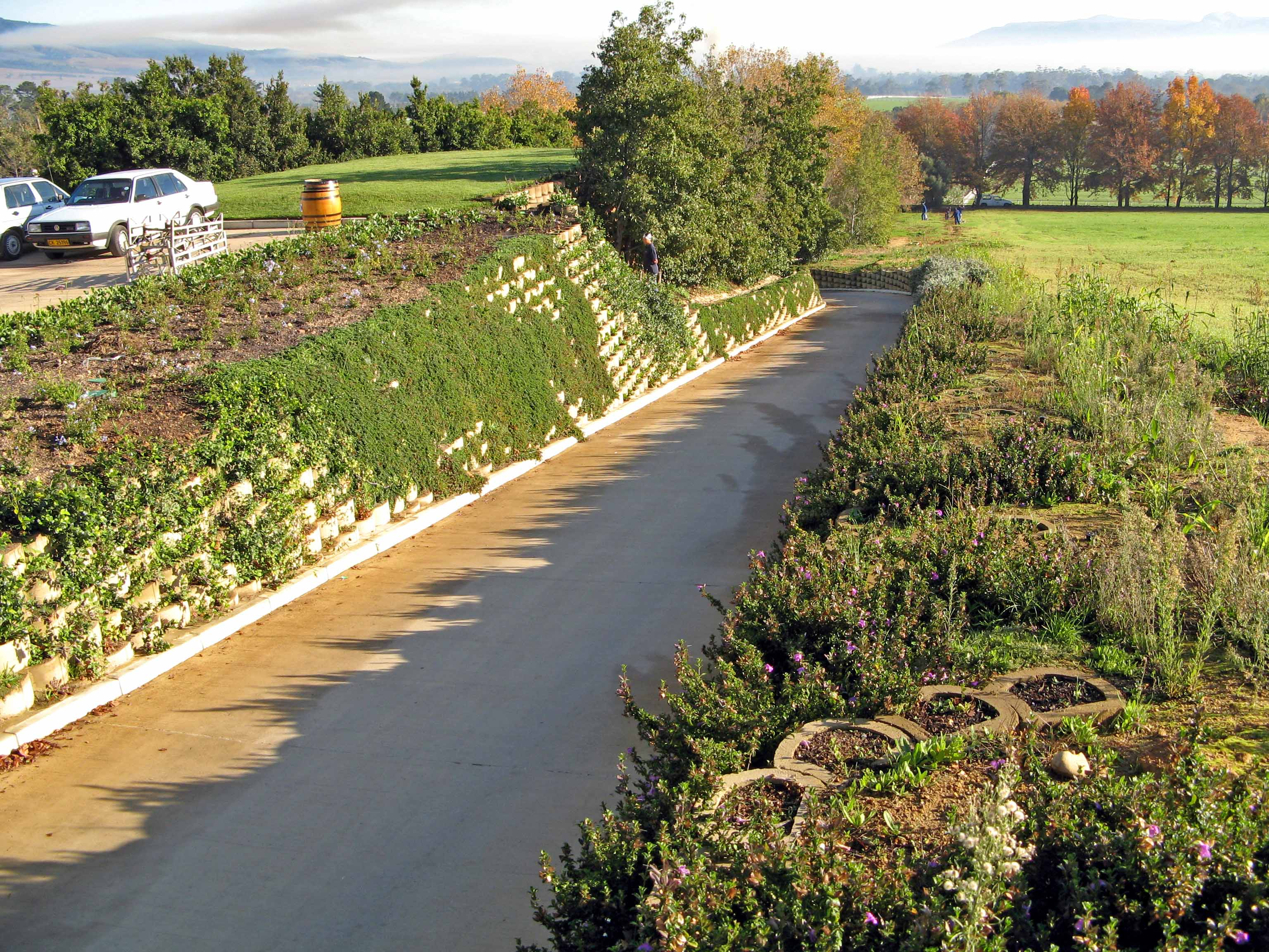 L'Ormarins wine estate, fully planted Terraforce wall
