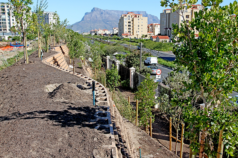 Planting underway at the Terraforce noise barrier for the new Rabie Property, Palm Royale Century City