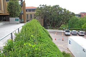 Green pedestal for UCT science building with Terrafix