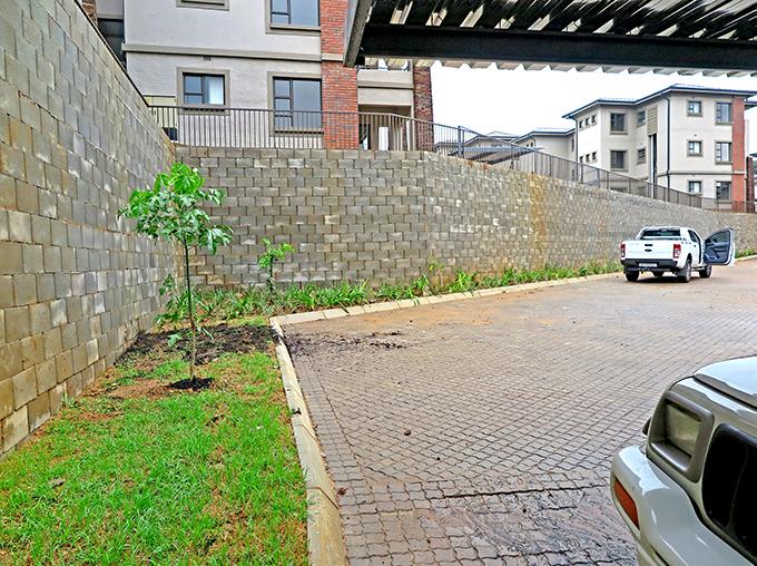 The Terraforce walls remain un-planted for less maintenance
