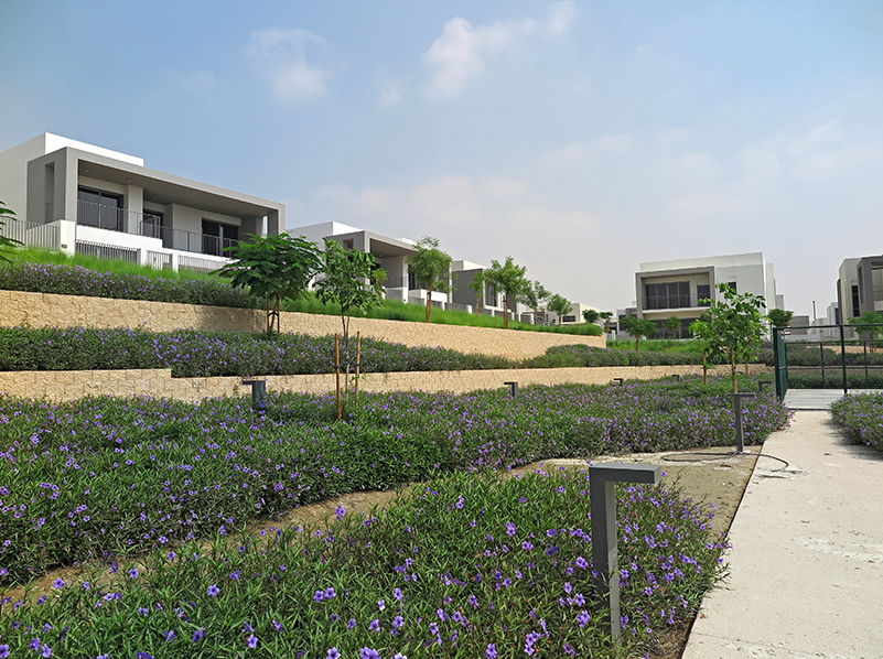 Hardscaping with Terraforce, Dubai Hills Estate
