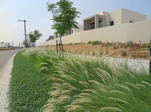 Terraforce low retaining walls add texture to the boundary wall of the estate