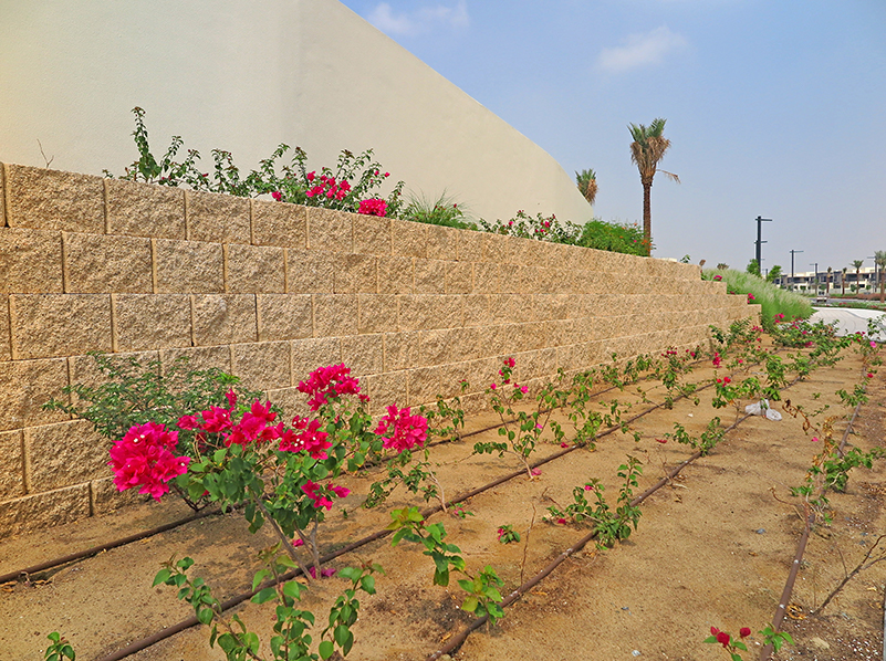 Terraforce walls fronting the boundary wall