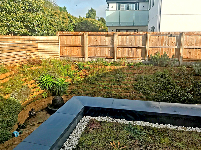 Terraforce wall in Rock, Cornwall, planted by Carol Barkwell, Barkwell Hotels
