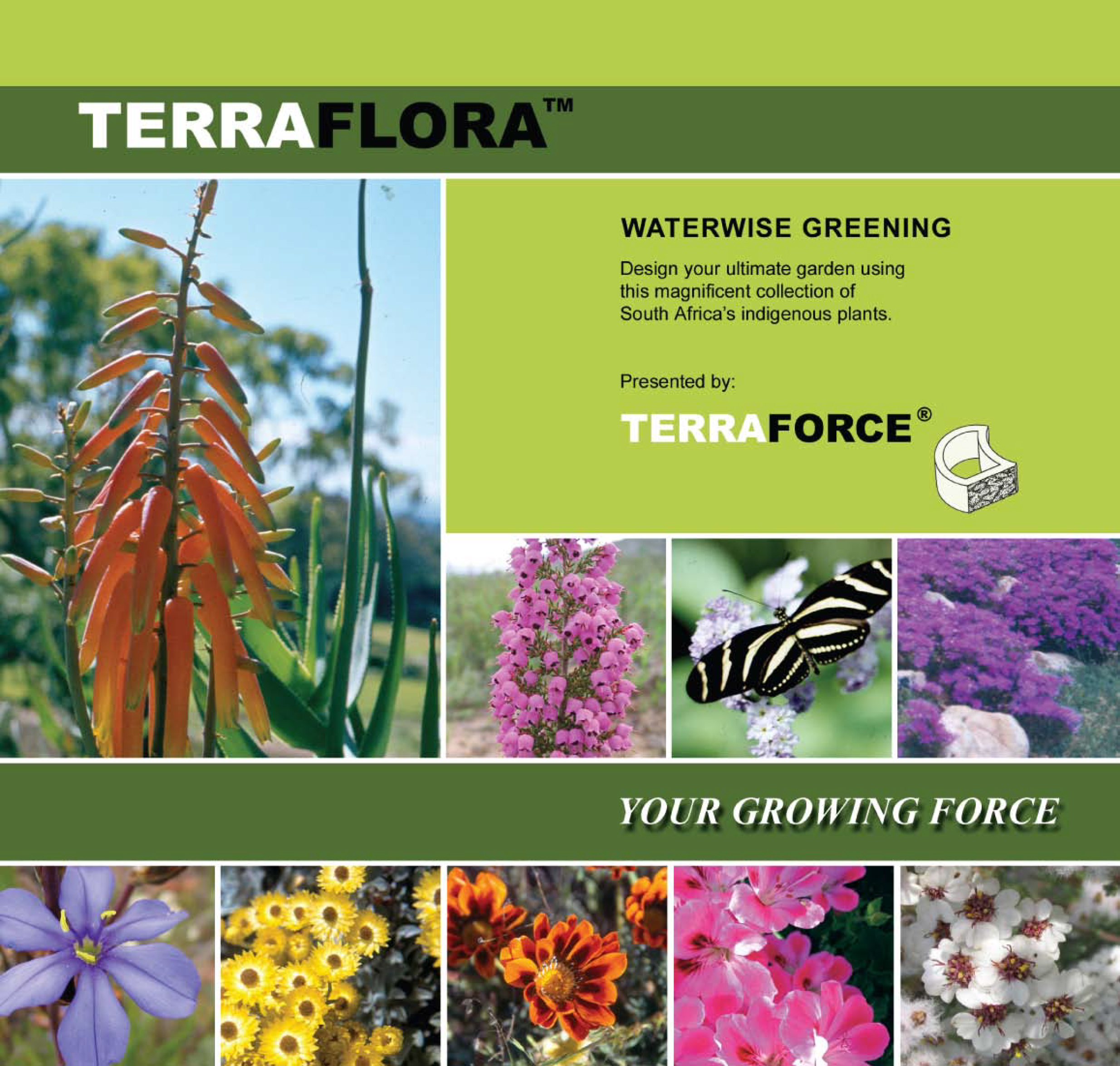 Terraflora, what plants to choose for your Terraforce retaining wall
