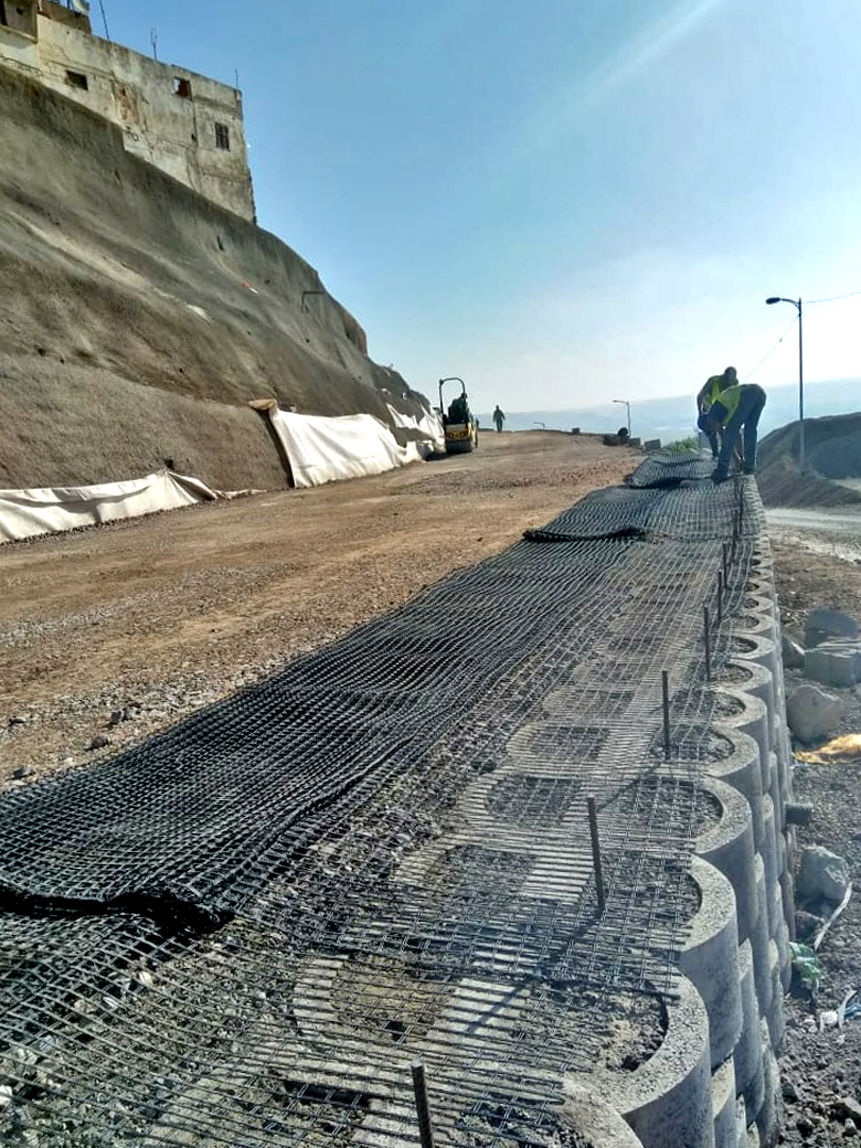 Steel rebar and Geogrid, with double block rows