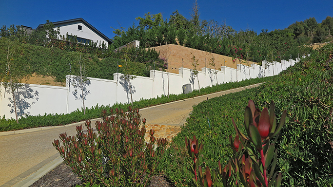 Landscaping with shrubs, trees and creepers