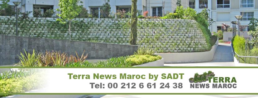 SADT Terra News Maroc